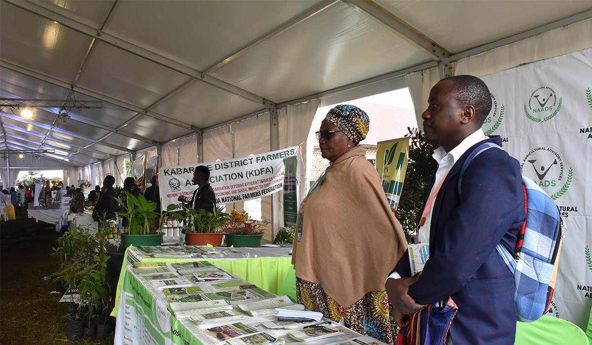 President applauds NAADS supported Farmer at the Rwenzori Investment Expo 2020
