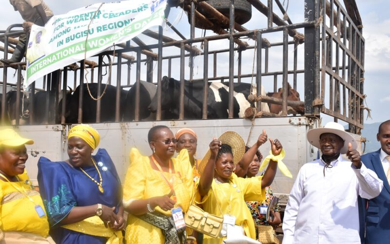 Women Leaders in Mbale district Receive 10 Heifers