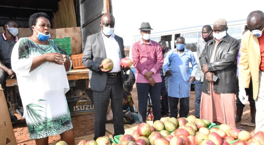 Construction of Nwoya Fruit Processing Factory to commence