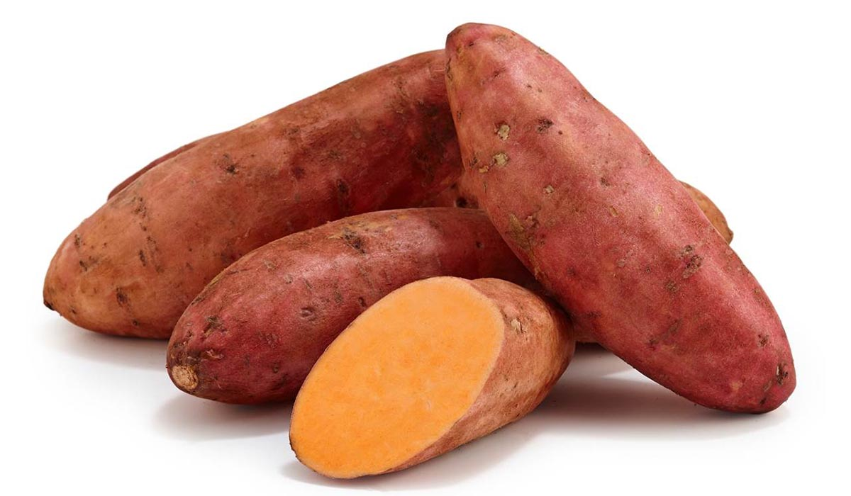 SWEET POTATO PRODUCTION GUIDE