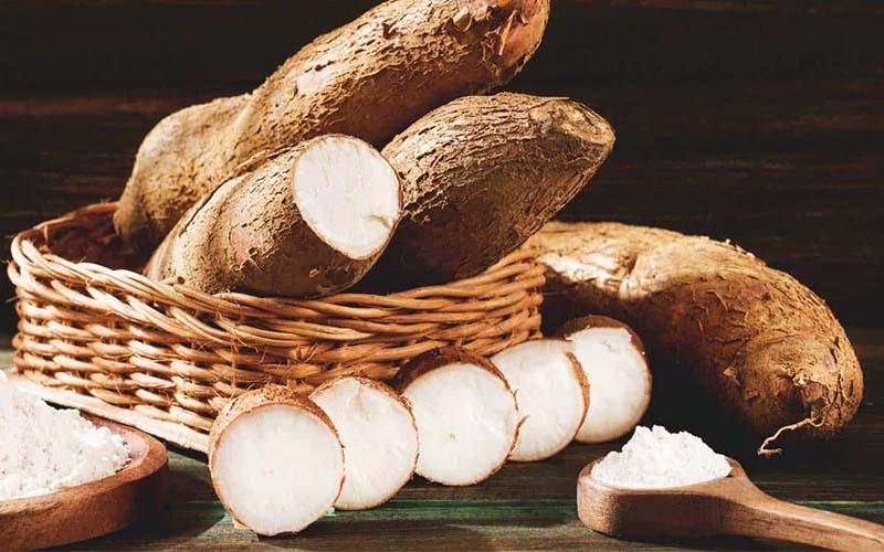 Cassava Storage