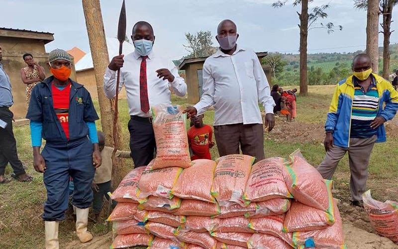 NAADS distributes planting materials worth 41.1bn as second planting season begins